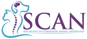 Specialists in Companion Animal Neurology (SCAN) Now Open in